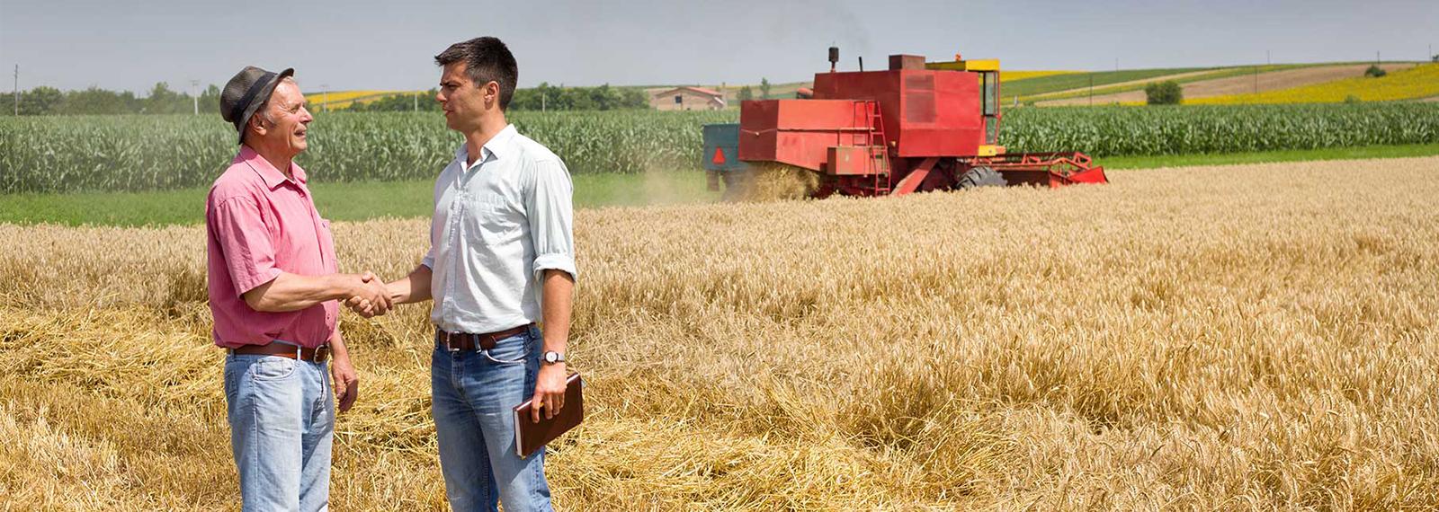 Course Image Lancement d'une entreprise agricole